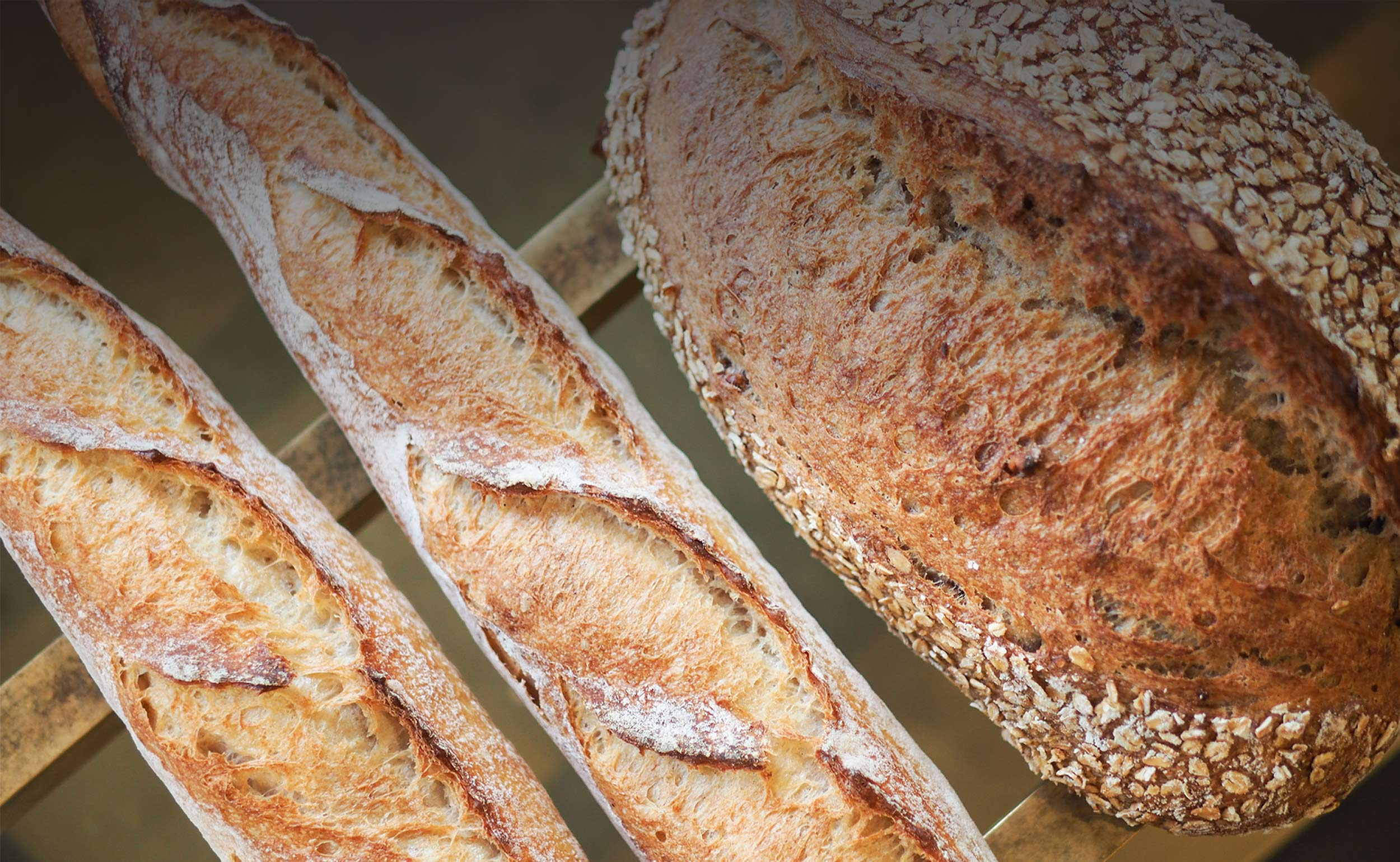 Two white baguettes and a loaf of bread covered in oats on a brass rack.